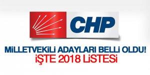 CHP milletvekili adayları belli oldu!