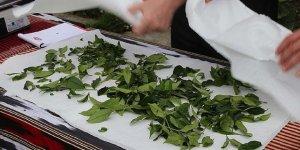 'Çaykur'u Araplara satmak istiyorlar'
