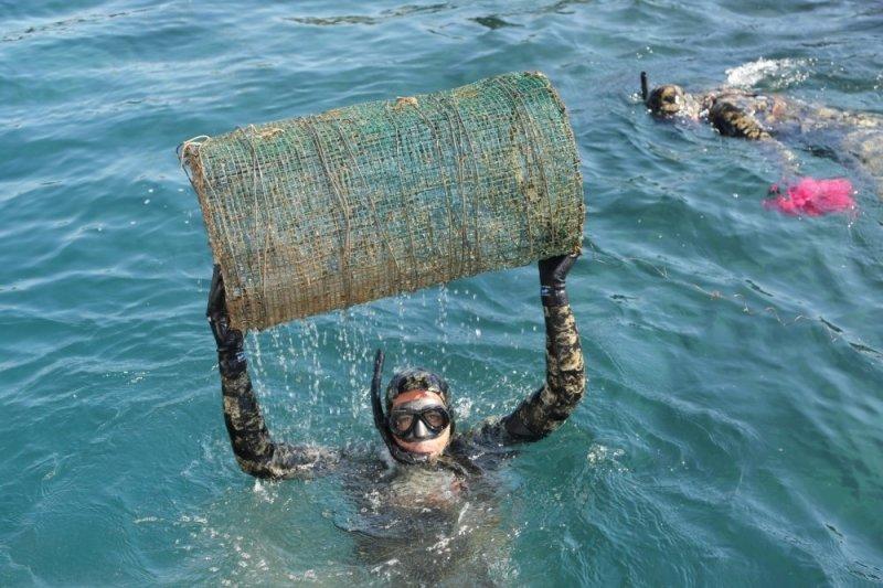 Yalıkavak'ta deniz dibi temizliği yapıldı