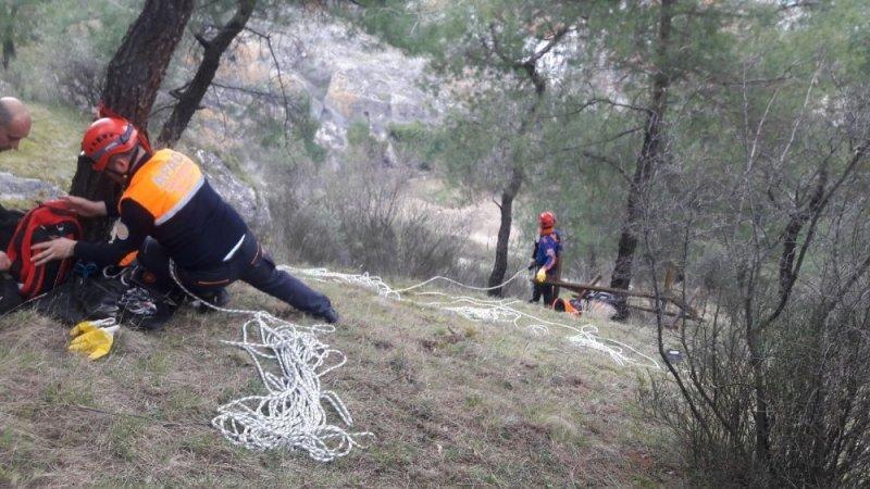 Sinop'ta köpek kurtarma operasyonu