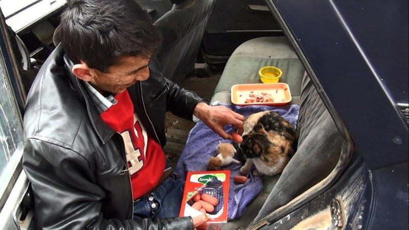 Doğum yapan sokak kedisine vatandaşlar sahip çıktı