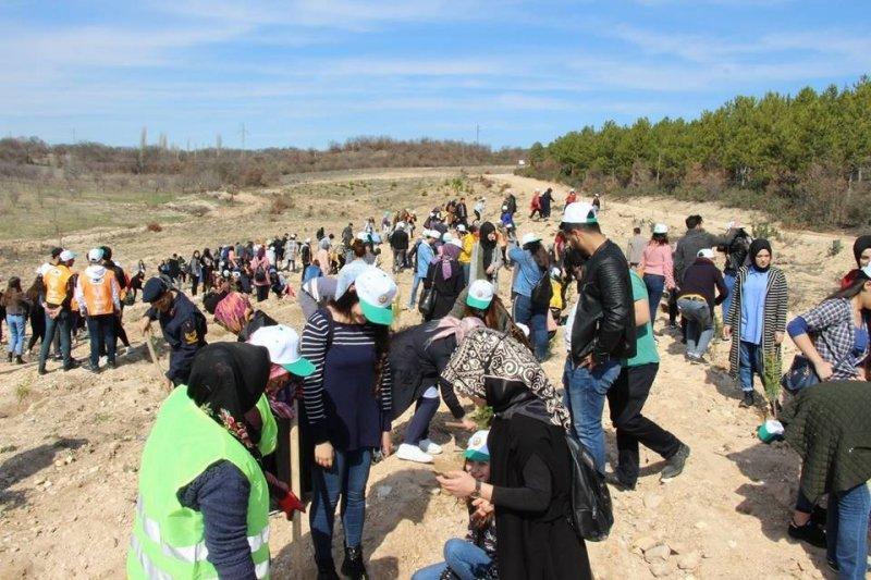 Şaphane MYO öğrencilerinin ağaç dikme etkinliği