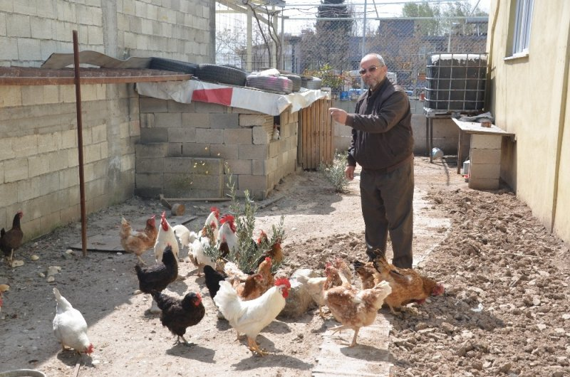Sanayi esnafından organik üretim