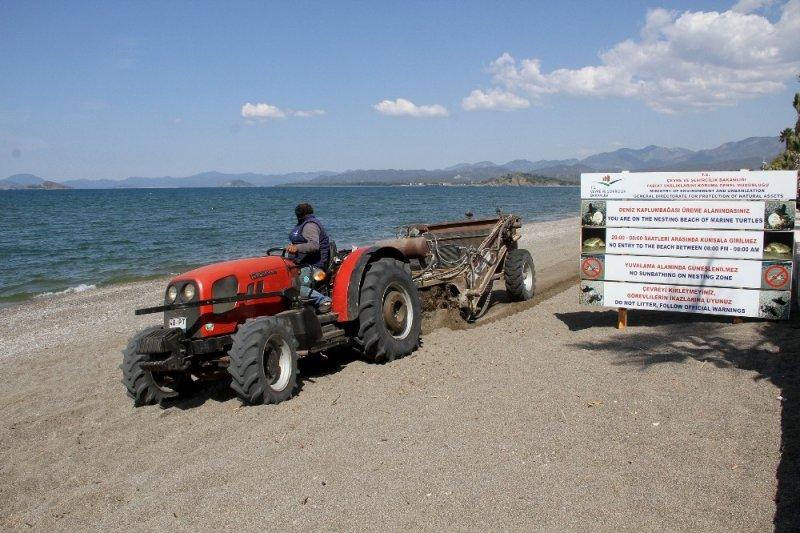 Çalış Plajı caretta carettalar için temizleniyor