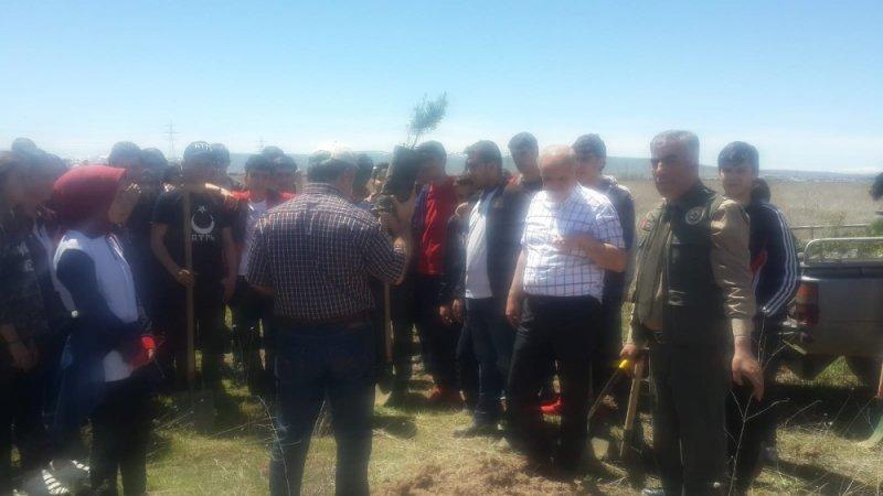 Necmettin Erbakan Fen Lisesi öğrencileri ağaç dikti