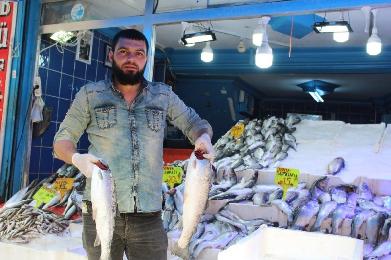 Balıkta çeşit çok, talep az