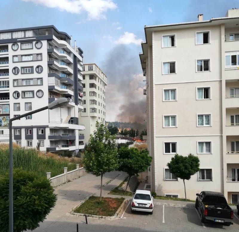 Şanlıurfa'da korkutan anız yangını