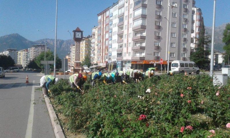 Seydişehir'de kavşak ve refüjler renkleniyor