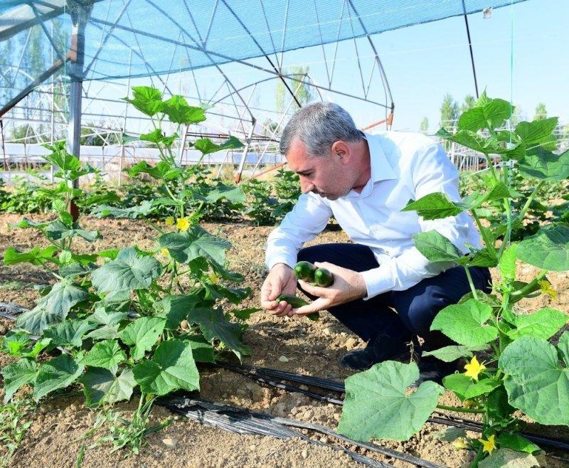 Yeşilyurt tarımda marka olacak