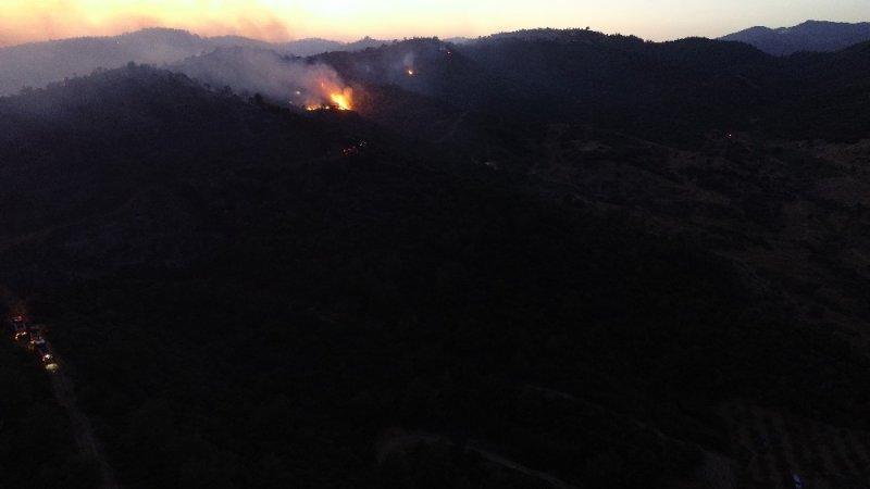 Mangal keyfi yaparken ormanı yaktıkları iddiası