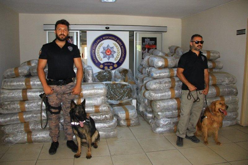 Muğla'da 50 milyon liralık uyuşturucu ele geçirildi