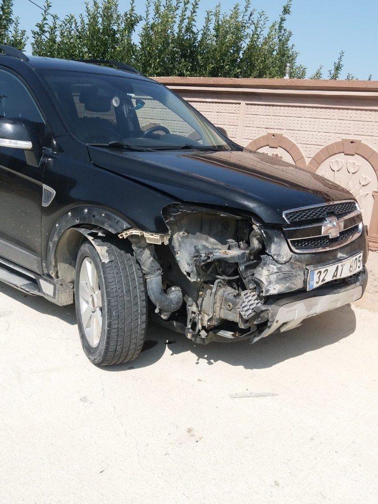 Isparta'da otomobilin çarptığı domuz telef oldu