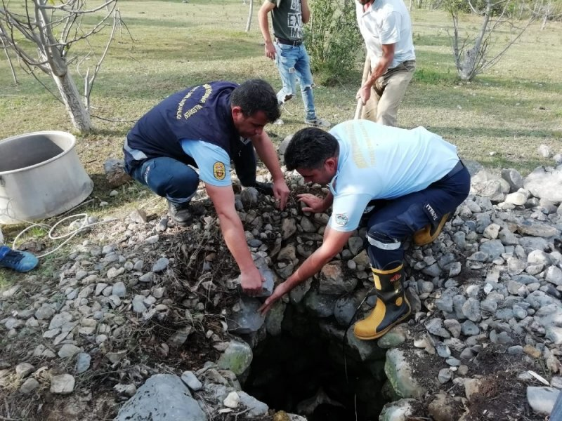 Su kuyusuna düşen inek itfaiye ekiplerince kurtarıldı