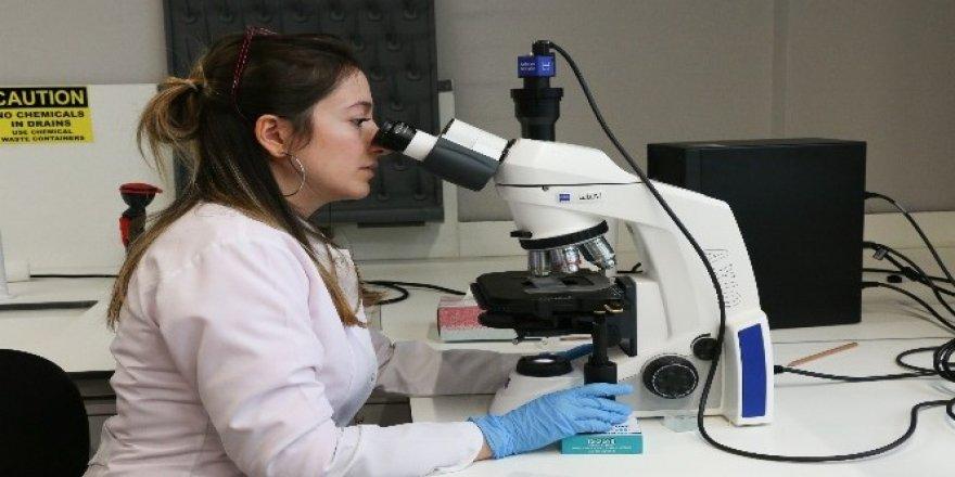 Konya Gıda ve Tarım Üniversitesi, şirketlerin 'Ar- Ge'si olacak