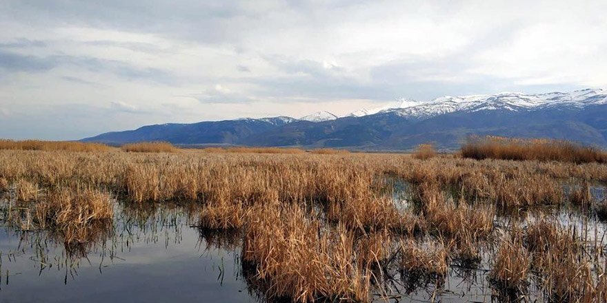 Konya Eber Gölü