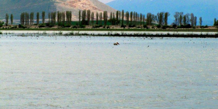 Ilgın Çavuşçu Gölü