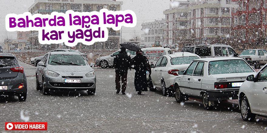 Baharda lapa lapa kar yağdı