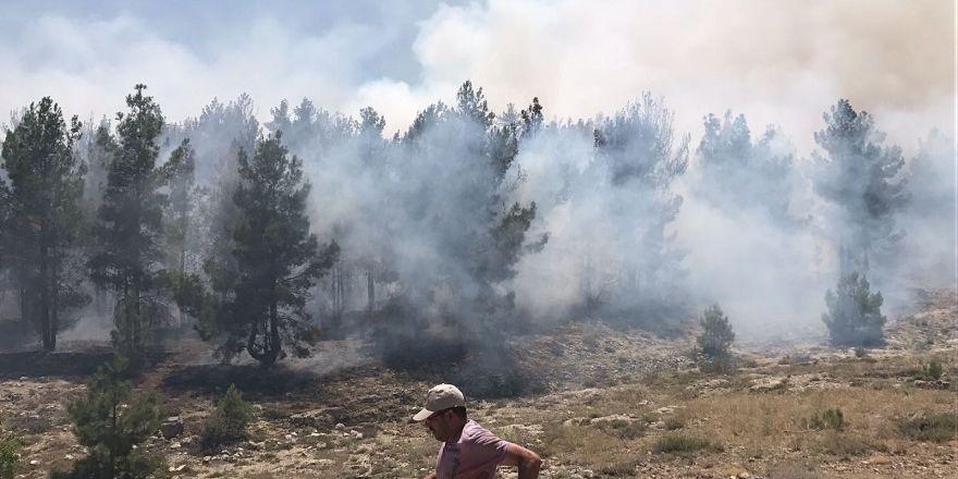 Dutlıkırı mesire alanında yangın çıktı