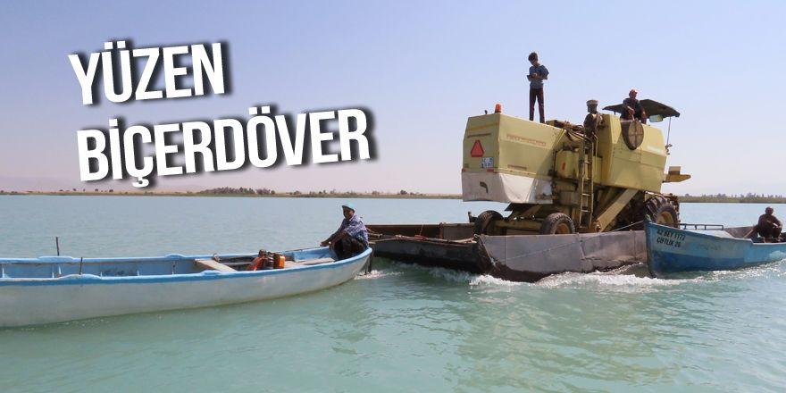Biçerdöver, Beyşehir Gölü'ndeki adaya yüzdürülerek götürüldü